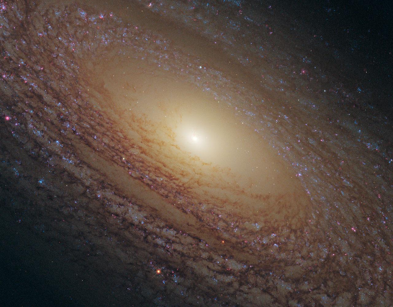 Фото с телескопа хаббл самое большое