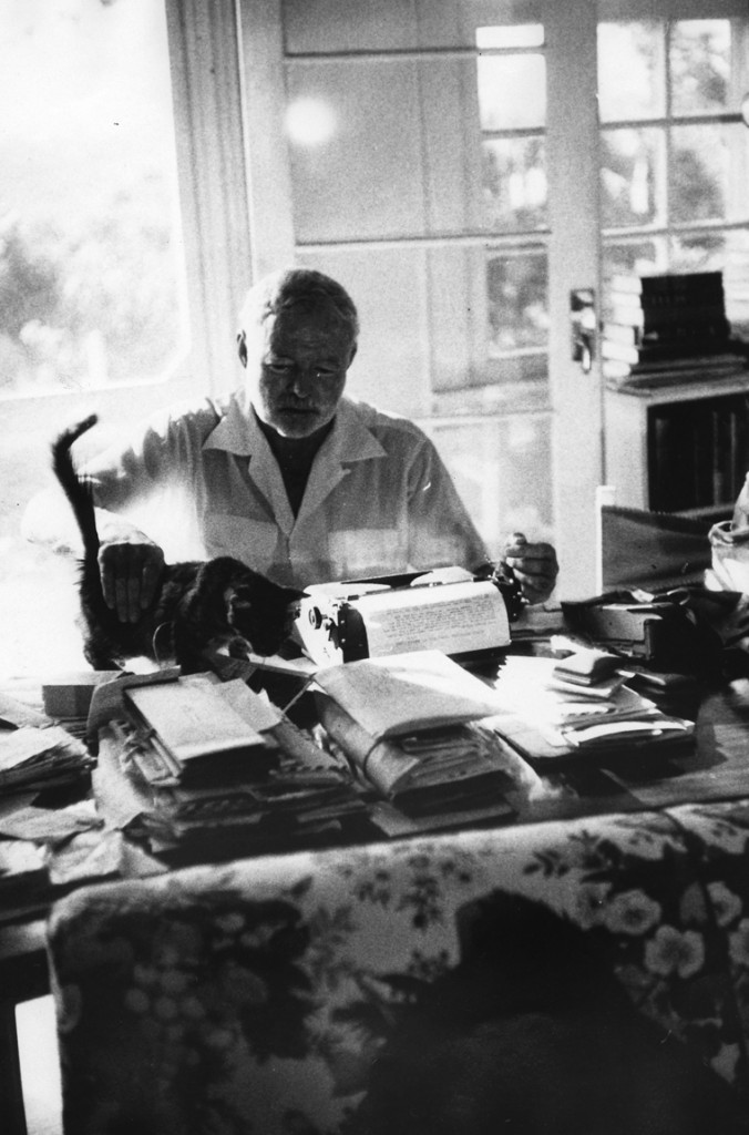 ernest hemingway s cat in the rain Hemingway uses a variety of literary techniques to produce a sense of ambiguity in the reader in cat in the rain he starts by using rain to evoke feelings such as melancholy and emptiness in the reader.
