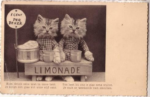 Старинные немецкие открытки с кошками (19)