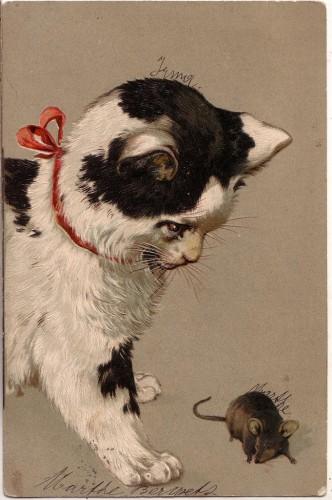 Старинные немецкие открытки с кошками (17)