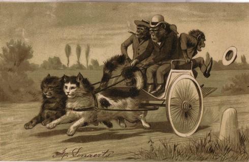 Старинные немецкие открытки с кошками (16)