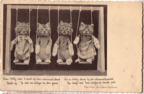 Старинные немецкие открытки с кошками (14)