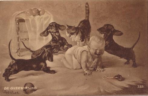 Старинные немецкие открытки с кошками (3)