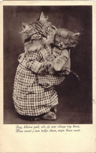 Старинные немецкие открытки с кошками (1)