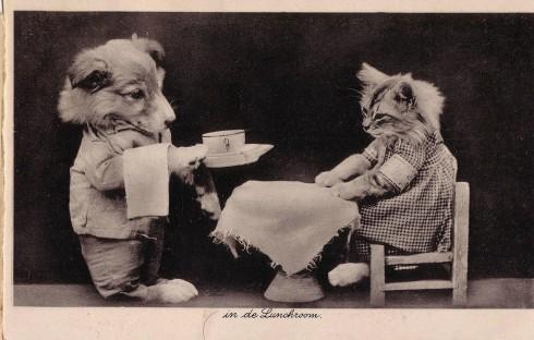 Старинные немецкие открытки с кошками (4)