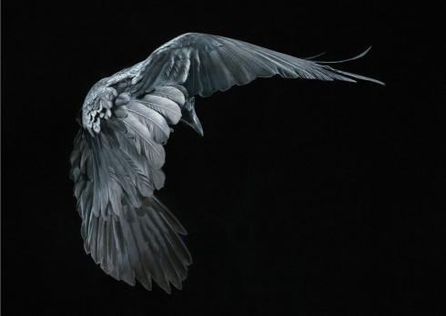 Коллекция фотографий «Больше, чем человек» (20)